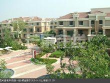 中海龙湾二期 清水 扩建完毕 随时看房-实景图