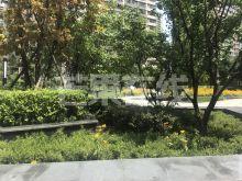 尚景新世界,高级装修,拎包入住,首次出租-绿化绿地