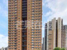 新加坡城,电梯三室洋房,家电家具齐全-楼外观