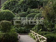婚装房 首租 室内用品齐全  有空调-绿化绿地