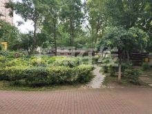 成龙花园 三室两卫采光好适合陪读-绿化绿地