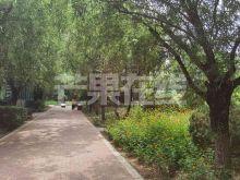 中海国际社区一期 家电齐全 看房方便-绿化绿地